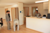 輸入住宅 施工例 西俣野の家 (7).jpg