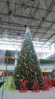 2010 クリスマス.JPG