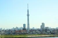 北欧輸入住宅 施工例 東京都葛飾区 金町の家 (4).jpg