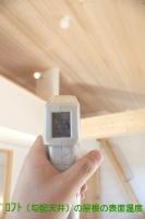 室内の表面温度 勾配天井  天井部分 (2階).jpg