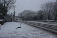 2013年 雪 まちかどモデルハウス (3).jpg