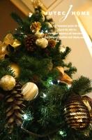 北欧輸入住宅 クリスマス 2013 (6).JPG