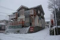 2013年の雪.jpg