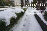 大雪 2014年2月.JPG